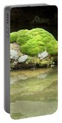 Mossy Turtle Rock Portable Battery Charger