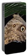 Moth 2 Portable Battery Charger