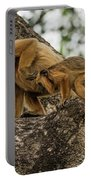 Mother And Baby Black Howler Monkeys Climbing Portable Battery Charger