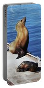 Mother And Baby Sea Lion At Oceanside  Portable Battery Charger