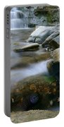 Mother Earth Portable Battery Charger