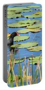 Mother Moorhen Portable Battery Charger