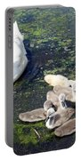 Mother Swan And Baby Cygnets Portable Battery Charger