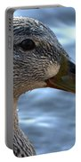 Mottled Duck Big Spring Park Crop Portable Battery Charger