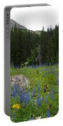 Mount Sneffels Lupine Landscape Portable Battery Charger