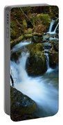Mount Tam Waterfall Portable Battery Charger
