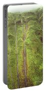 Mount Waialeale Portable Battery Charger