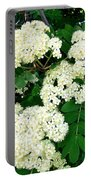 Mountain Ash Blossoms Portable Battery Charger