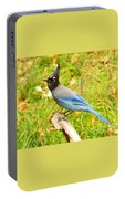 Mountain Blue Jay Portable Battery Charger