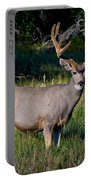 Mountain Buck  Portable Battery Charger