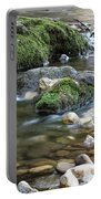 Mountain Creek Spring Nature Scene Portable Battery Charger