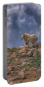 Mountain Goat Overlook Portable Battery Charger