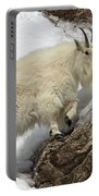 Mountain Goat With Grace Portable Battery Charger