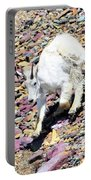 Mountain Goat3 Portable Battery Charger