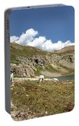 Mountain Goats At Columbine Lake - Weminuche Wilderness - Colorado Portable Battery Charger