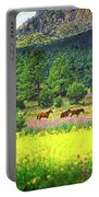 Mountain Horses Portable Battery Charger