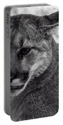 Mountain Lion Bw Portable Battery Charger