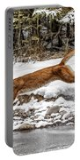 Mountain Lion Leap Portable Battery Charger