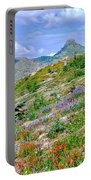 Mountain Of Color Portable Battery Charger