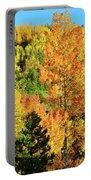 Mountain Of Color In Dillon Colorado Portable Battery Charger