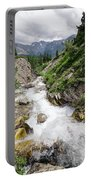 Mountain River Portable Battery Charger by Margaret Pitcher