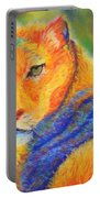 Mountian Lion 1 Portable Battery Charger