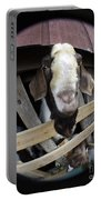 Mr B Goat Portable Battery Charger