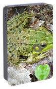 Mr. Perfectfrog Portable Battery Charger