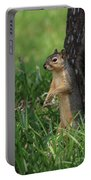 Mr. Squirrel Portable Battery Charger