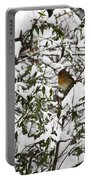 Mrs Cardinal In The Jasmine Portable Battery Charger