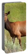 Ms. Elk Portable Battery Charger