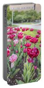 Msu Spring 19 Portable Battery Charger