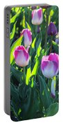 Msu Spring 3 Portable Battery Charger