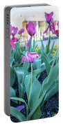 Msu Spring 33 Portable Battery Charger