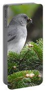 Mt Mitchell Junco Portable Battery Charger