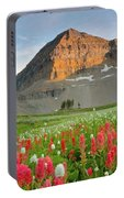 Mt Timpanogos Portable Battery Charger