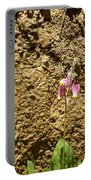 Mud Wall Portable Battery Charger