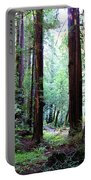 Muir Woods 1 Portable Battery Charger