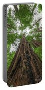 Muir Woods  Portable Battery Charger