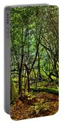 Muir Woods Rejuvenation Portable Battery Charger