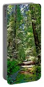 Muir Woods Study 22 Portable Battery Charger