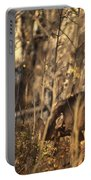 Mule Deer In Aspen Thicket Portable Battery Charger