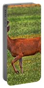 Mule Deer On The Sante Fe Trail Portable Battery Charger