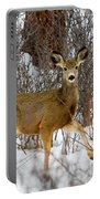 Mule Deer Portrait In Heavy Snow Portable Battery Charger