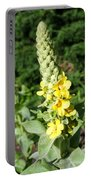Mullein Wildflower Portable Battery Charger