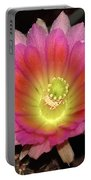 Multi Color Flower Portable Battery Charger