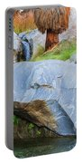 Murray Canyon Falls Portable Battery Charger