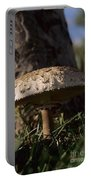 Mushroom II Portable Battery Charger