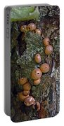 Mushroom Tree Trunk Portable Battery Charger