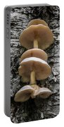 Mushroom Treehouse Portable Battery Charger